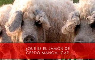 jamón de cerdo mangalica