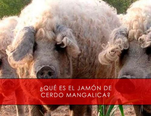 ¿ Qué es el jamón de cerdo mangalica ?